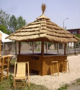 tiki-bar-tropical-kiosk