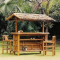 Ultimate Guide to Setting Up a Backyard Tiki Bar